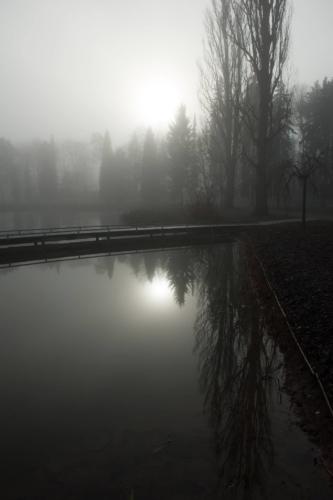 Fotografie města - rybník v zimě