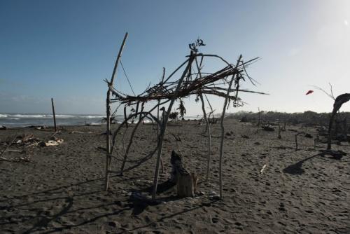 Fotografie přírody - Pláž na Novém Zélandu